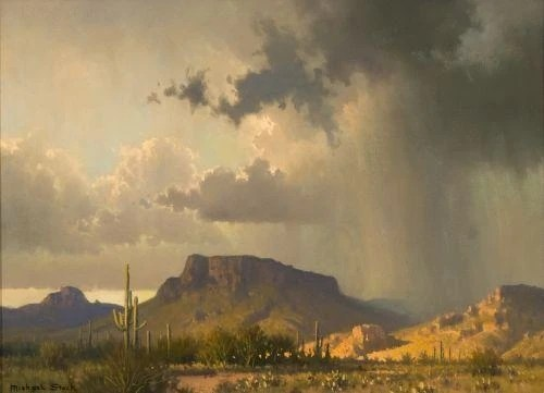 Image result for rain desert