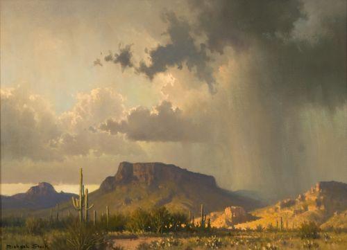 Image result for rain desert