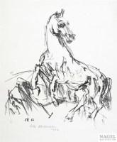 Steigendes Pferd Zeichnung   Vorlagen zum Ausmalen gratis ...