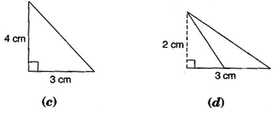 NCERT Solutions for Class 7 Maths Exercise 11.2
