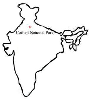 NCERT Solutions for Class 8 Science Conservation of Plants