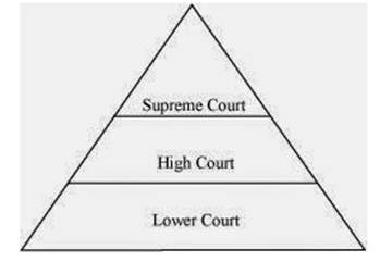 NCERT Solutions for Class 8 Social Science Political