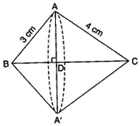 NCERT Solutions for Class 10 Maths Exercise 13.5
