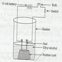 NCERT Solutions for Class 10 Science Acids, Bases and