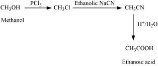 NCERT Solutions class 12 Chemistry Amines part 1