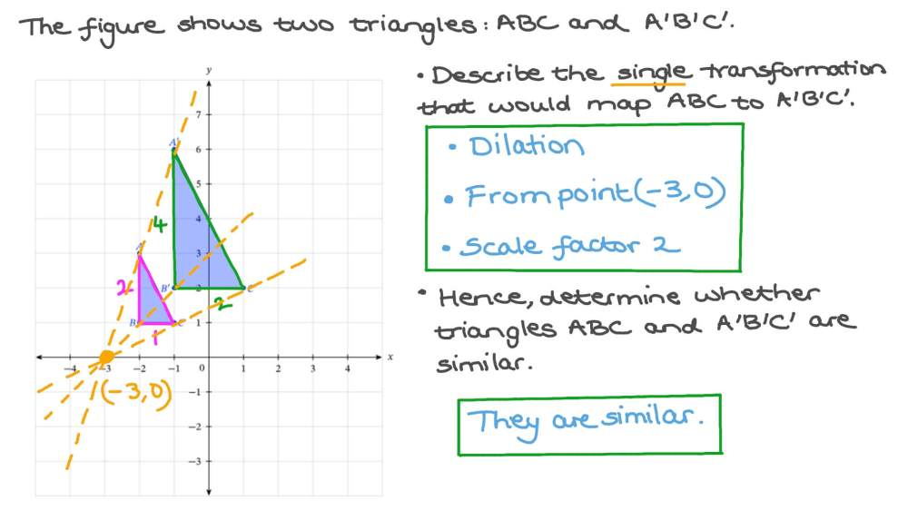 medium resolution of Question Video: Determining Whether Two Shapes are Similar   Nagwa