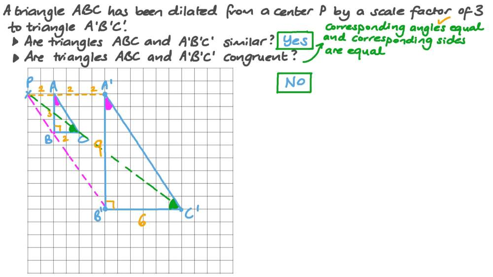 medium resolution of Question Video: Understanding If Triangles Are Similar or Congruent After a  Dilation   Nagwa