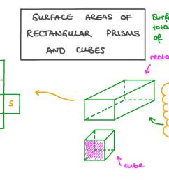 Lesson: Surface Areas of Rectangular Prism and Cubes   Nagwa [ 756 x 1344 Pixel ]