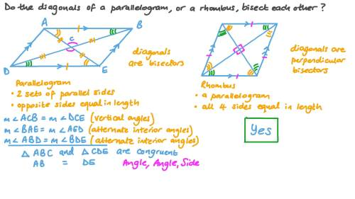 small resolution of Question Video: Properties of Parallelograms and Rhombuses   Nagwa