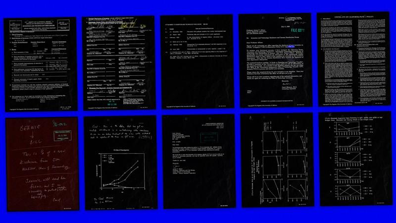A non-fungible token visualisation of Jim Allison's Nobel Prize-winning CTLA-4 blockade patent disclosures