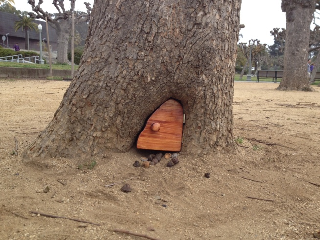 A tiny door in the base of a tree in Golden Gate Park is attracting a lot visitors. Joe Rosato Jr. reports.