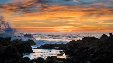Monterey Bay Aquarium Has Beautiful Virtual Backgrounds NBC Los Angeles