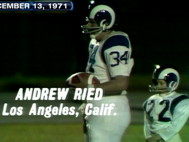 Image result for andy reid punt pass