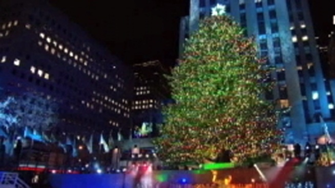 Ever wonder what happened to last year's tree at Rockefeller Center? NBC10's Monique Braxton tells you how it helped build Habitat for Humanity homes.