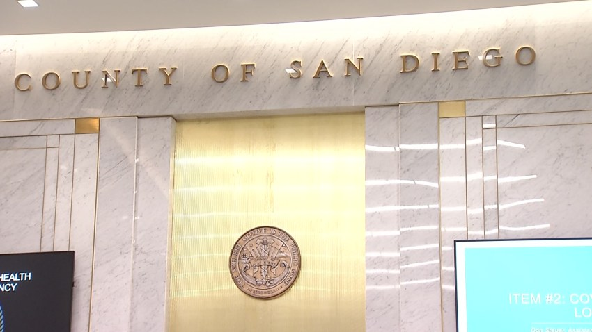 $1.3M Fund Created for SD Groups Helping Those in Need During ...