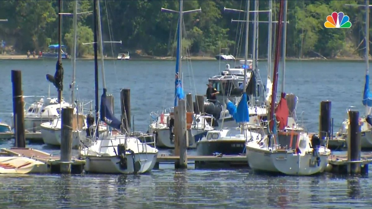 'It Was Surreal': Woman Crashed Stolen Ambulance Into a New York Bay, Police Say