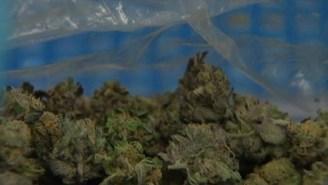 D.C. Votes to Decriminalize Small Amounts of Pot