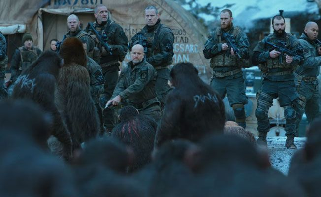 Image result for military with apes
