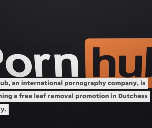Video Pornhub Promises Free Leaf Removal For Dutchess Residents Newscentermaine Com