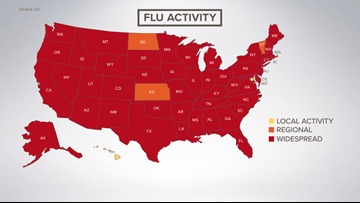 Flu cases confirmed in all 16 Maine counties; virus now considered ...