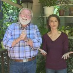 Grow With Kare Bringing Outdoor Plants Inside Newswest9 Com