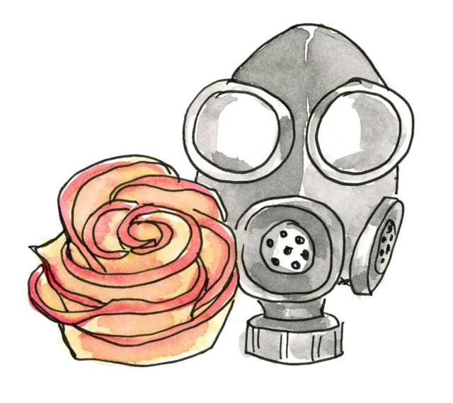 An apple carved into a rose next to a gas mask.