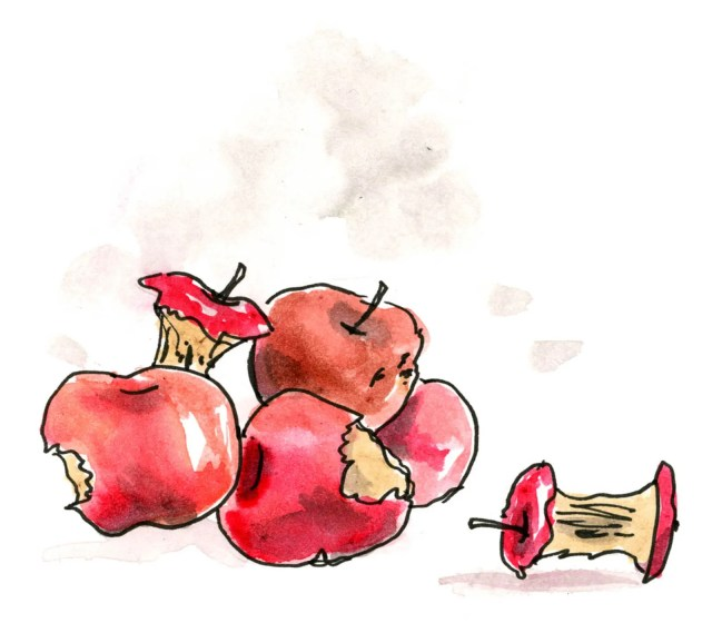 Two apple cores and three partially eaten apples.