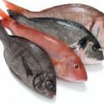Fisk du kan äta
