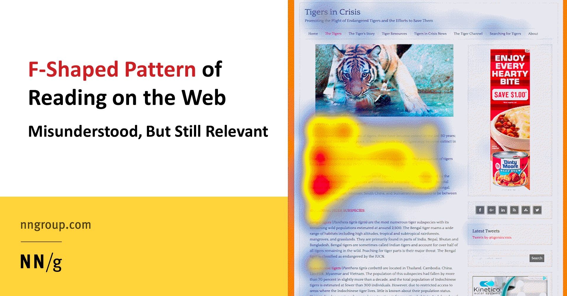 FShaped Pattern of Reading on the Web Misunderstood But Still Relevant Even on Mobile