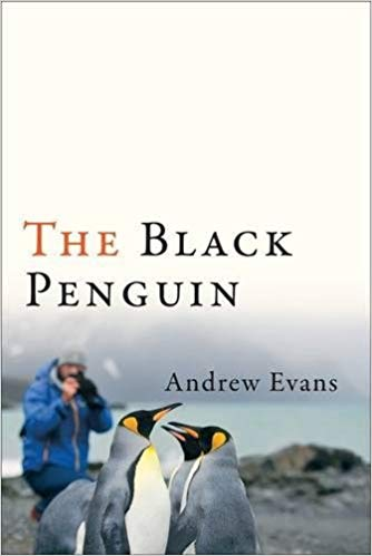 Black Penguin by Andrew Evans
