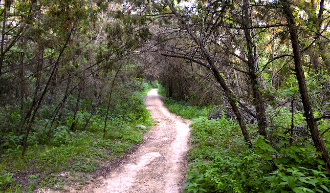 A trail on the Barton Creek Greenbelt in Austin