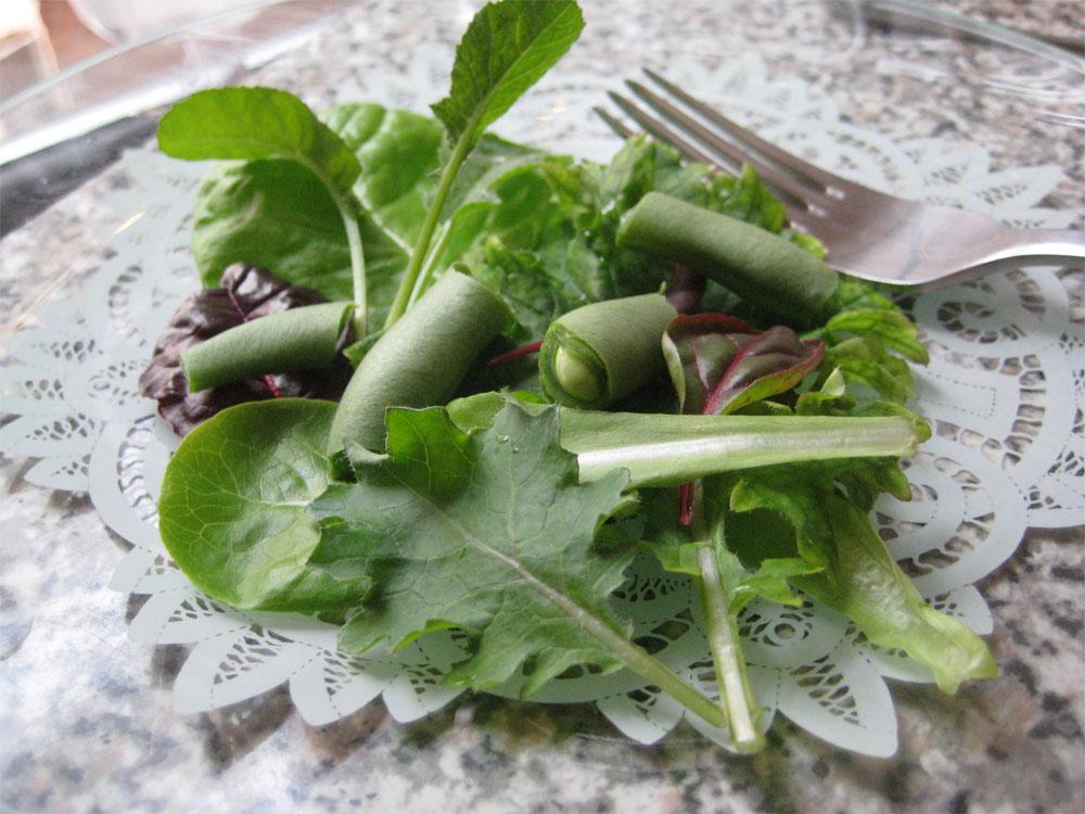 Salad from Britta  Riley's window farm.