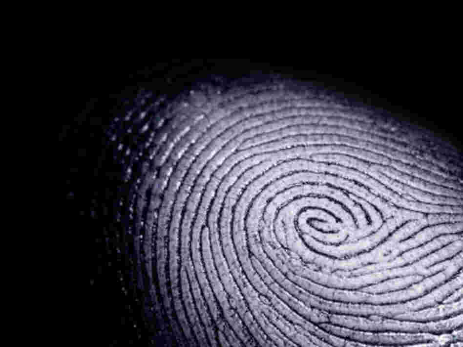 People Search, Criminal Background Checks: How to find cell