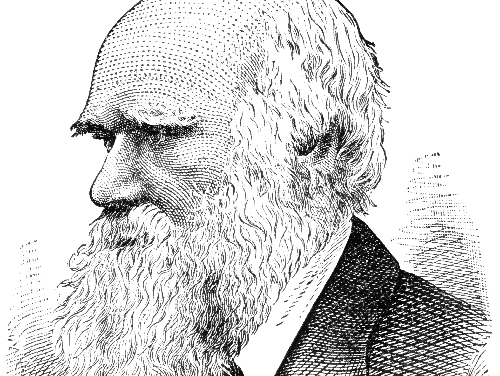 Mental Disorders And Evolution: What Would Darwin Say