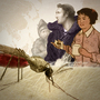 A second promo image for the malaria animation post.