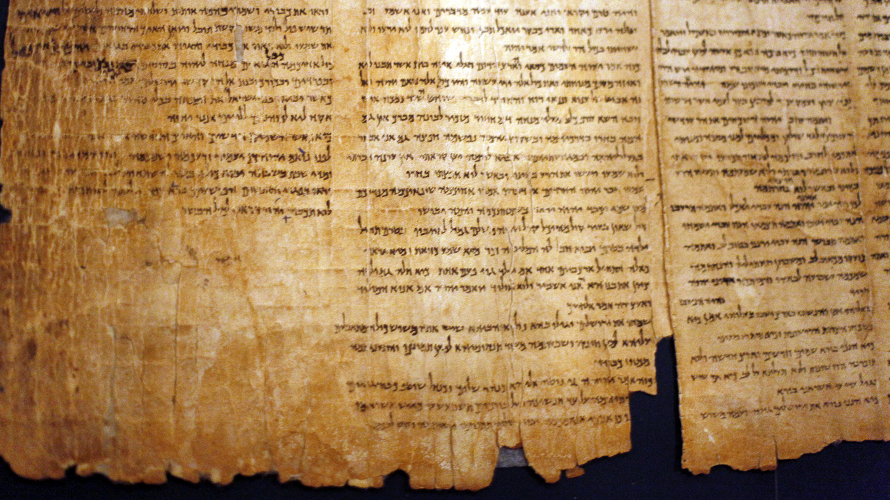 Dead Sea Scrolls Live On In Debate And Discovery  NPR