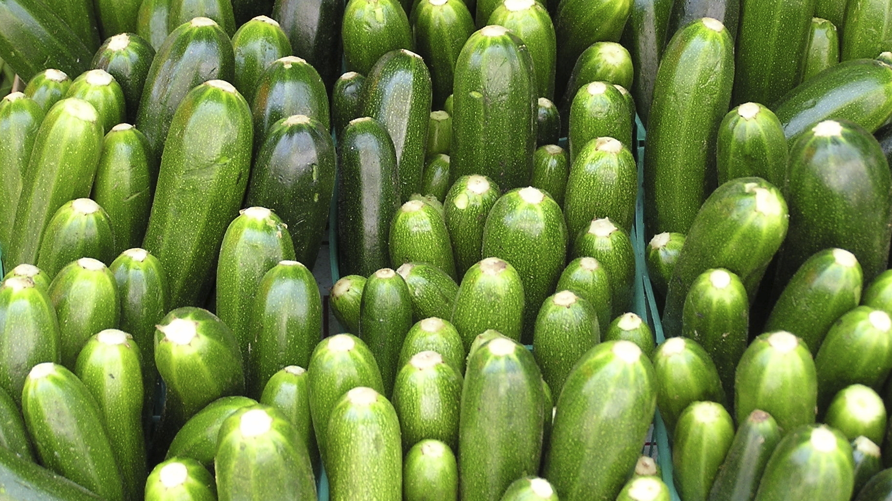 Drowning In Zucchini 3 Recipes Can Help Npr