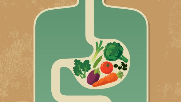 Image result for microbiome food