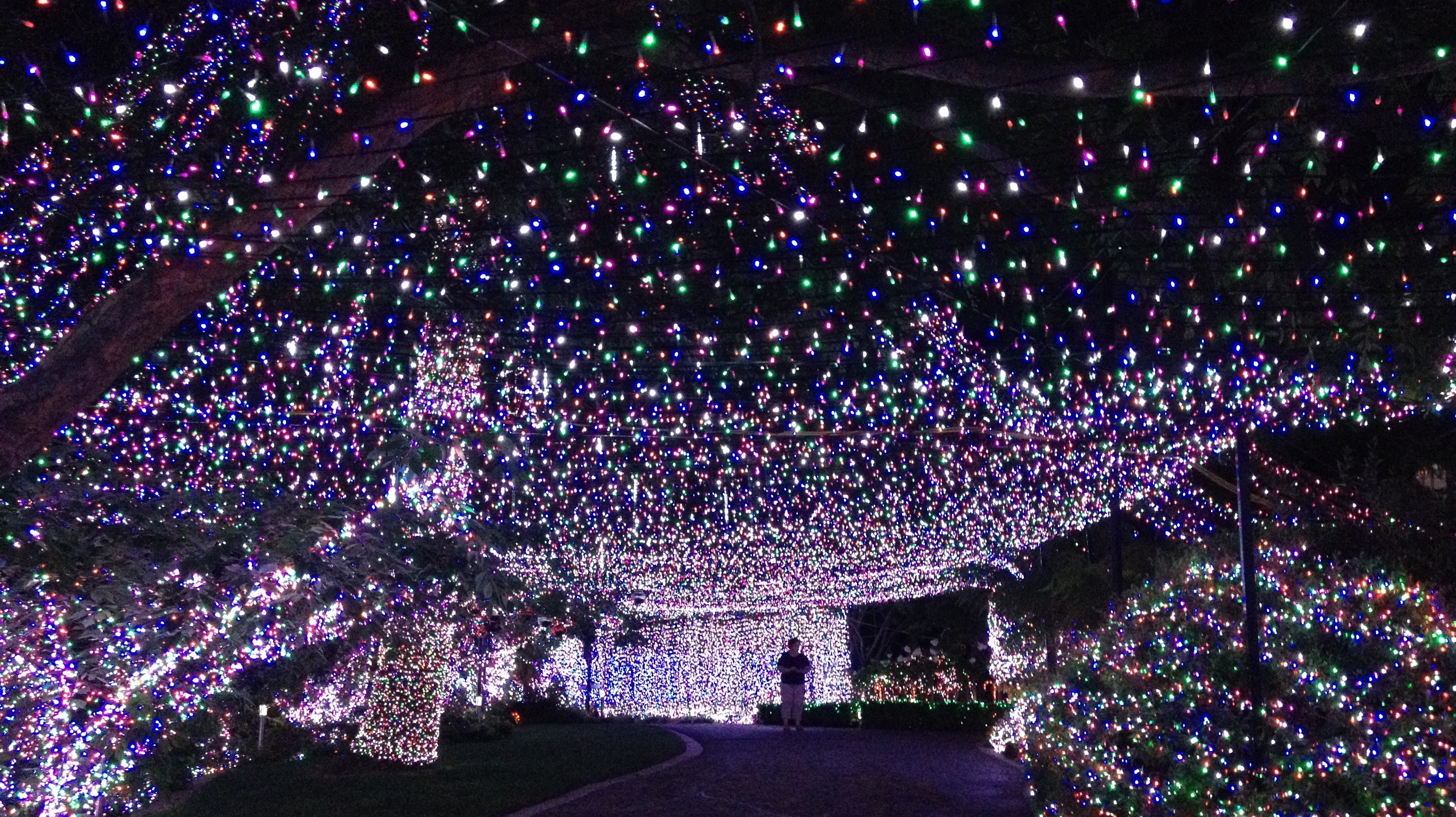 500 000 lights family s christmas display sets new world record in australia the two way npr [ 1400 x 786 Pixel ]