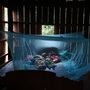 Yonta, 6, rests with her sister Montra, 3, and her brother Leakhena, 4 months, under a mosquito bed net in the Pailin province of Cambodia, where the mortality rate from malaria has dropped sharply in the past two decades.