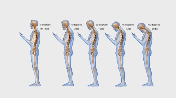 Image result for good posture free image""