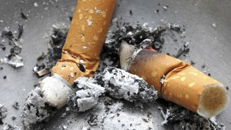 Image result for tobacco deaths