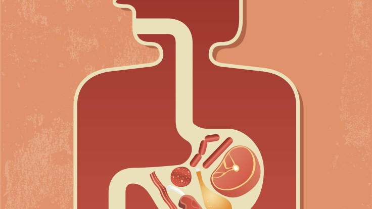 A small new study shows that successful dieters had an abundance of a bacteria called Phascolarctobacterium, whereas another bacteria, Dialister, was associated with a failure to lose weight.