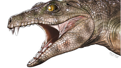 Veggie Surprise: Teeth Of Ancient Crocs Reveal That Some Very Likely Ate Plants