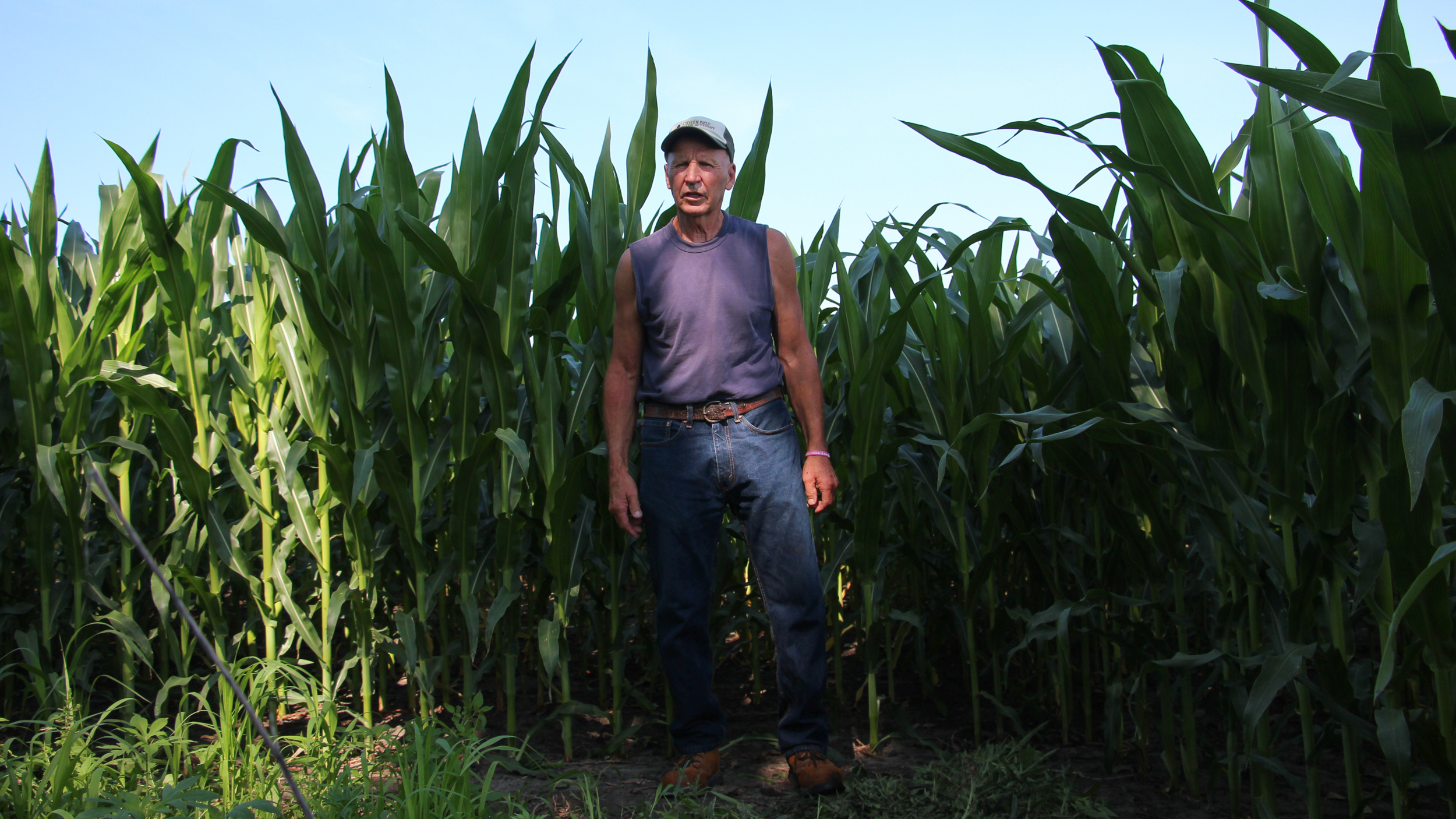 Investor Ownership Of American Farmland May Be Good For