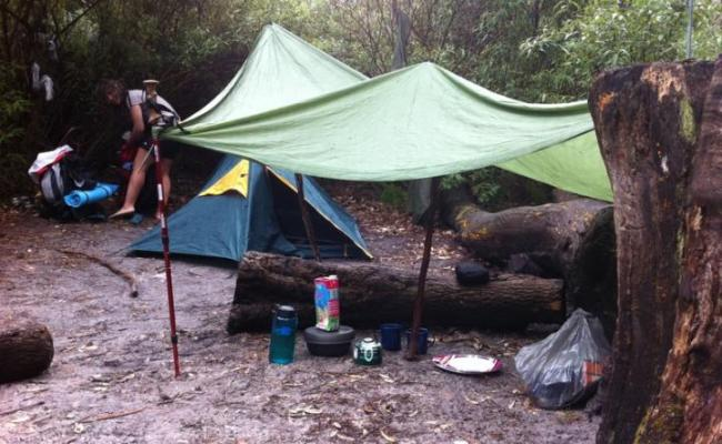 Blog From Little Waterloo Bay Victoria Where The Hell