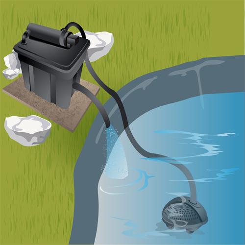 de filtration dans un bassin