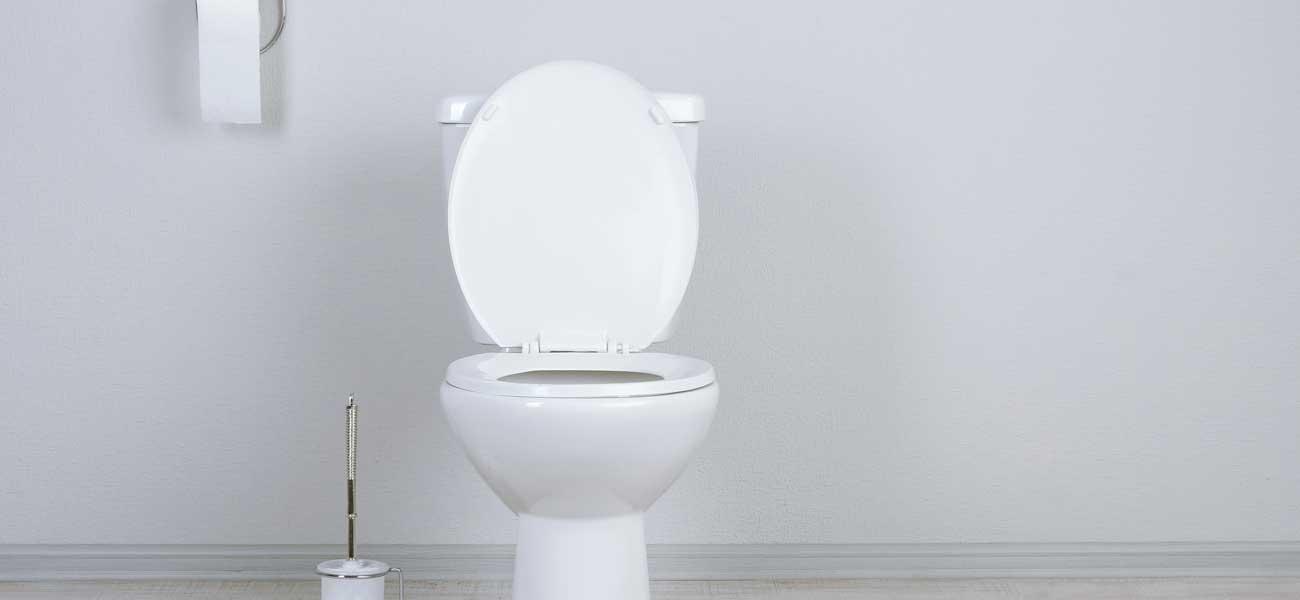 Poser Un WC Toutes Les Tapes De Linstallation Dun WC