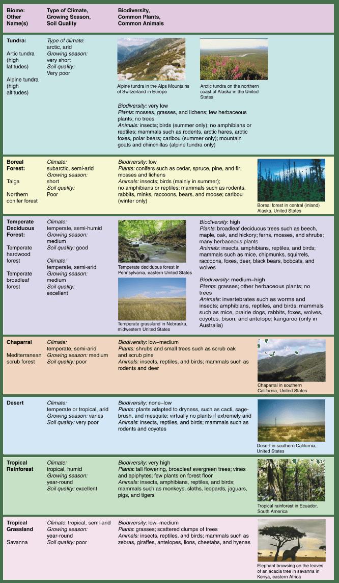 Terrestrial Biomes ‹ OpenCurriculum