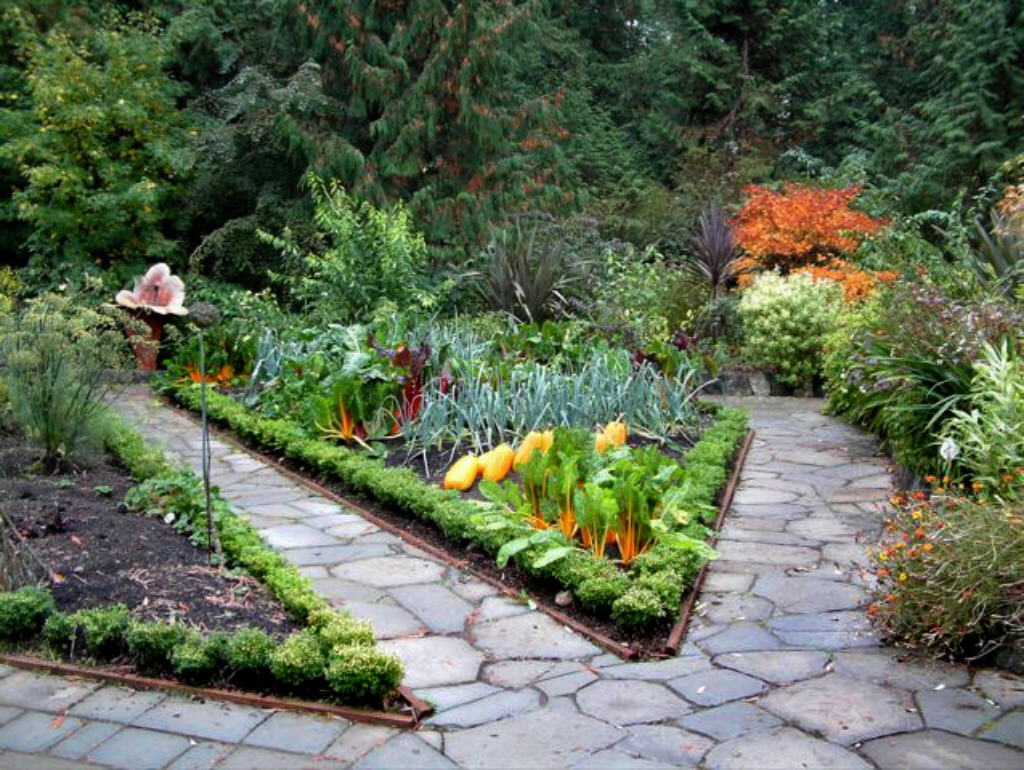 Plan an edible garden with beauty in mind  OregonLivecom